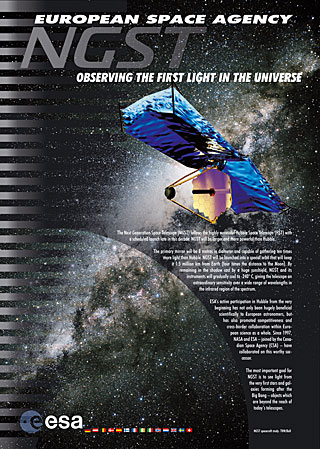 NGST - Observing the First Light in the Universe
