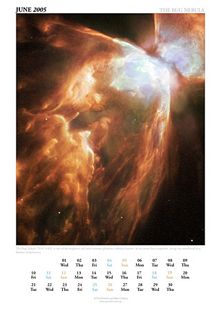June 2005 - The Bug Nebula
