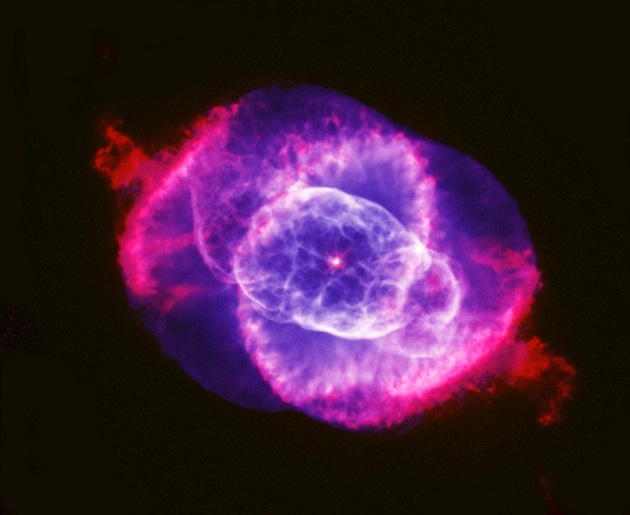 Nebula Eye Cat