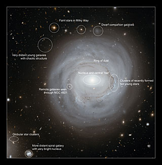 NGC 4921 Annotated Image Courtesy of Hubble/ESA