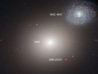 Galaksen M60 med M60-UCD1 og en anden nabogalakse NGC4647