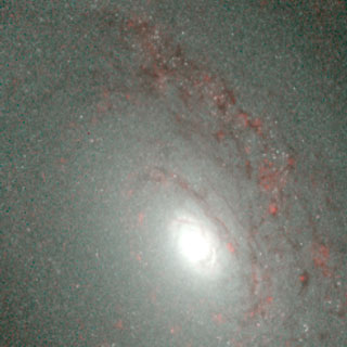 Hubble's Infrared Galaxy Gallery. A View of NGC 4826