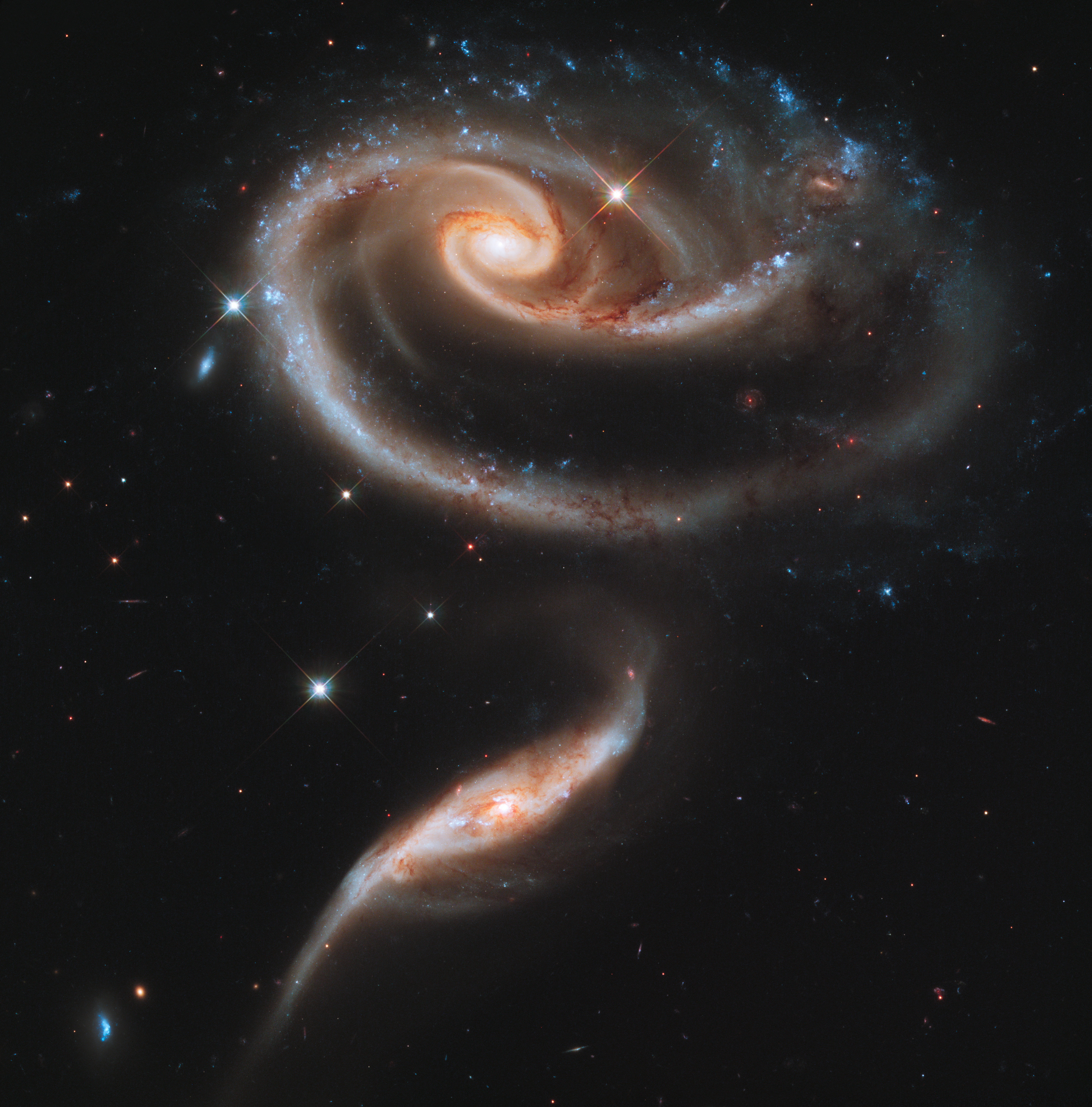 A rose made of galaxies | ESA/Hubble
