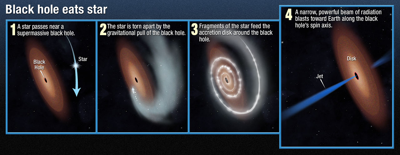 The properties of the space phenomenon called the black hole