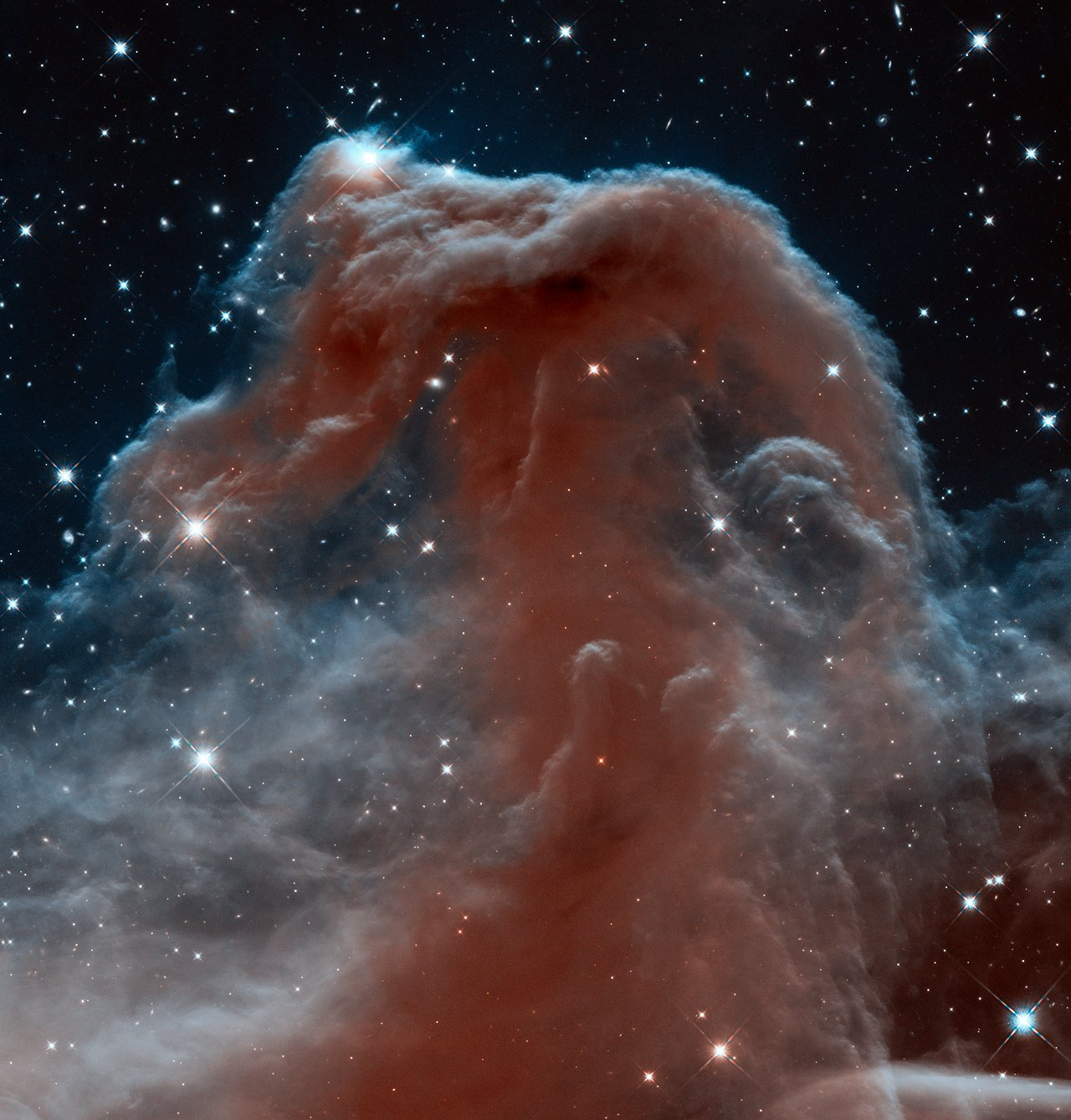 New infrared view of the Horsehead Nebula  Hubbles 23rd Anniversary Image