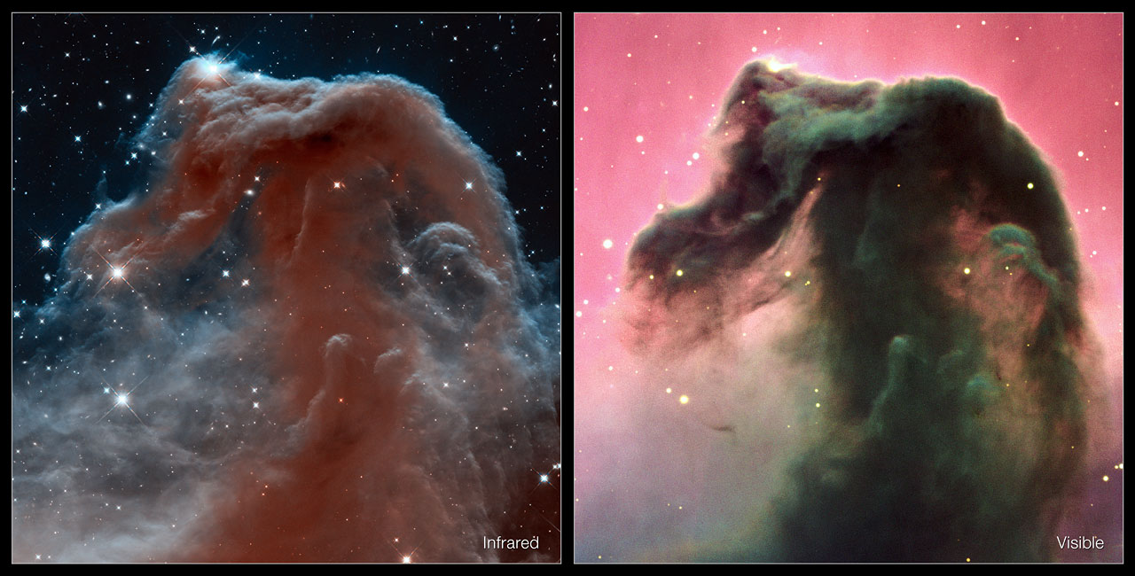 Infrared and visible views of the Horsehead Nebula
