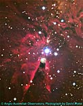 Ground-Based Visible-Light Image of the Cone Nebula With Outline of the NICMOS Infrared-Light Image