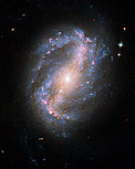 Barred spiral galaxy NGC 6217