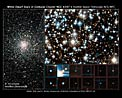 Hubble Finds Young White Dwarfs on the Fast Track