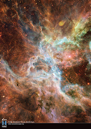 Postcard07: The Tarantula Nebula