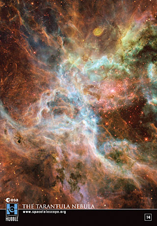 Sticker 14: The Tarantula Nebula (SOLD OUT)